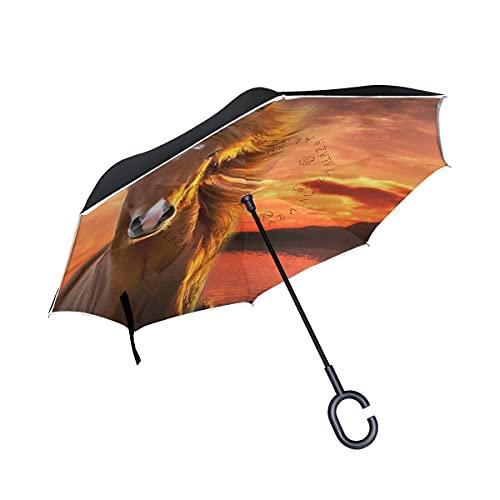 hengpai Balck Dogs - Paraguas invertido invertido al revés para coche, resistente al viento, a prueba de rayos UV, doble capa para mujer