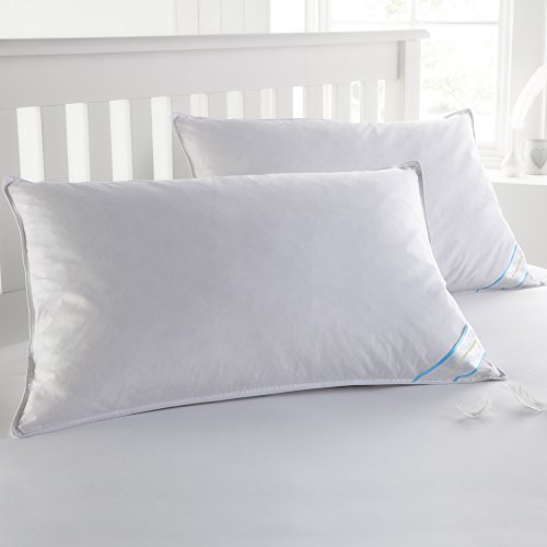 Sweet Home Collection Goose Down and Feather Bed Pillow 2 Pack - Soft and Comfortable Quality Bedding 20' x 30', Queen
