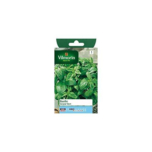 Vilmorin - Sachet graines Basilic Grand vert