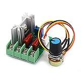 Regulador de Velocidad Motor 220v 2000W SCR, Interruptor de Temperatura del Transformador del Tablero Estabilizador de Voltaje de Salida/Atenuador de Luz del Regulador de Velocidad