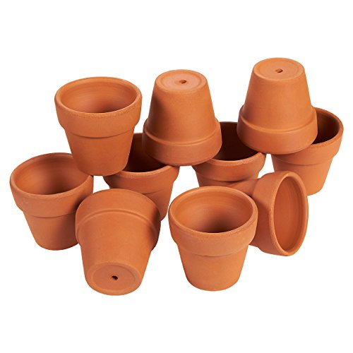 Mini Terra Cotta Pots (10-Pack) - Mini Flower Pots with Drainage Holes - Small Ceramic Clay Pots for Cacti, Succulents, Flowers - 6.6 x 4.1 x 6.4 Centimetres