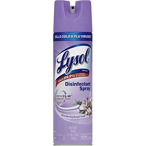 Lysol Disinfectant Spray, Early Morning Breeze, 19 Ounce (Pack of 5)