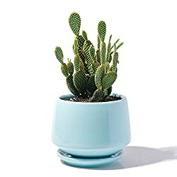 Blue modern flower pot