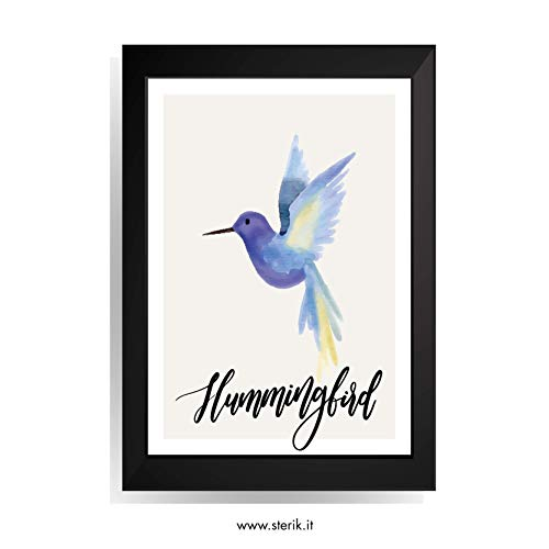 Sterik Quadro con Cornice Nera - Animal (Hummingbird)