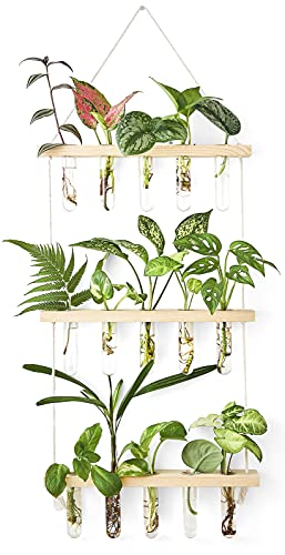 Mkono Wall Hanging Planter Terrarium with Wooden Stand, 3 Tiered Mini Test Tube Flower Vases Retro Hanging Glass Planter Propagator for Hydroponic Plants Cutting Home Office Garden Decor-15 Test Tubes