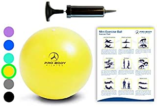 Mini Exercise Ball with Pump - 9 Inch Small Bender Ball for Stability, Barre, Pilates, Yoga, Core Training and Physical Therapy