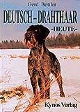 Deutsch-Drahthaar Heute (Das Hundeportrait)