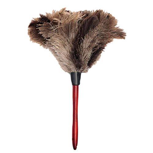ACAMPTAR stofdoek struisvogel-struisvogel-stofdoek zacht stofdoek voor meubels, ventilatorvleugels