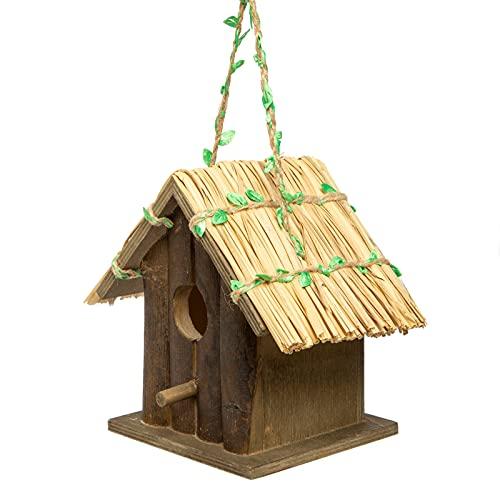 GmbH Casa de pájaros con Colgante, casita de pájaros, casa pájaros pequeños, casa de Madera para pájaros, Nido para pájaros