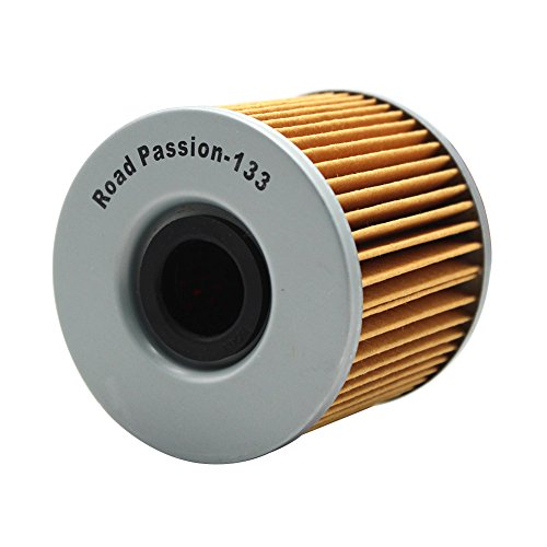 Road Passion Filtro de Aceite para GS500H 2007- 2009 / GS500F 2004- 2010 / GS500E 1988- 2000