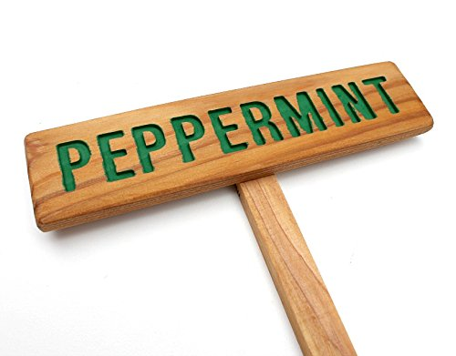 PEPPERMINT Garden Sign Painted Oil Limited Special Price Sealed Cedar Ro OFFicial shop Hand Wood: