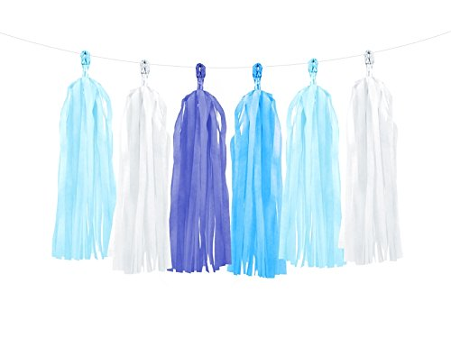 wYw Blue DIY Tassel Garland Banner for Wedding, Gender Reveal, Birthday Party, Event & Party Decoration, Mix Of Colors, 12 Pieces