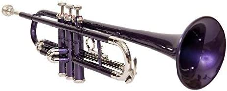 SAI Chicago Mall Many popular brands TRADERS Trumpet Chrome Color BB purple