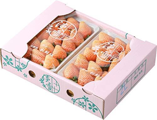 いちご 白いちご 淡雪 あわゆき 赤秀 大粒 3L〜Lサイズ 270g×2パック 熊本県産 苺 イチゴ