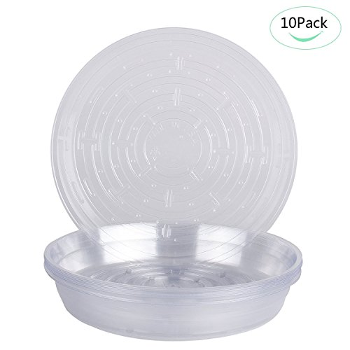 Omont Clear Plant Saucers,15 Pack