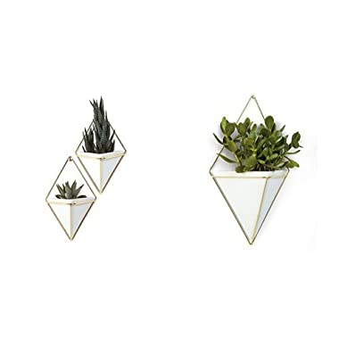 Umbra Trigg Hanging Planter Vase & Geometric Wall Decor Container - Great For Succulent Plants, Air Plant, Mini Cactus, Faux Plants and More, White Ceramic/Brass (Set of 3) Small (2) and Large (1)
