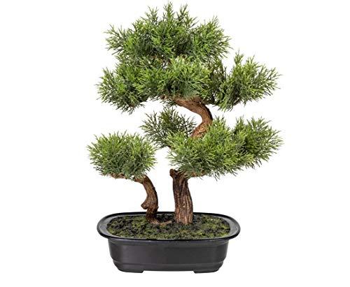 kunstpflanzen-discount.com Zeder Bonsai Kunstbaum mit 2 Stämmen in Schale 40cm - künstlicher Bonsaibaum Kunstbonsai Dekopflanze
