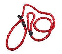 ペット犬ナイロン調整可能なループスリップトレーニングリードリードロープスリップ犬のリードと首輪1.2 m