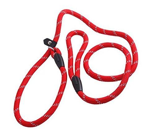 Laisse en nylon pour chien - Avec boucle ajustable - Collier - Rouge - 1,2 m