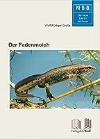 Der Fadenmolch: Lissotriton helveticus