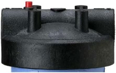 Pentek 154166 - 1 Inch Black Cap Blu Release Challenge the lowest price of 4 years warranty Japan ☆ For Big Pressure W
