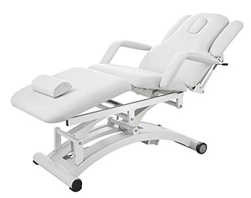 Three Motor Electric Facial Massage Treatment Chair Table Bed - USA-2241C