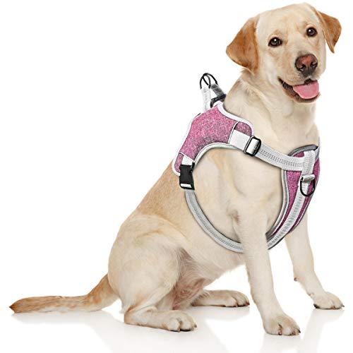 TAMOWA Pettorina Cane, Pettorina Regolabile e Riflettente per Cani, Imbracatura Cane Traspirante Durevole pettorina per Cani Piccolo Medio Grande (M, Viola)