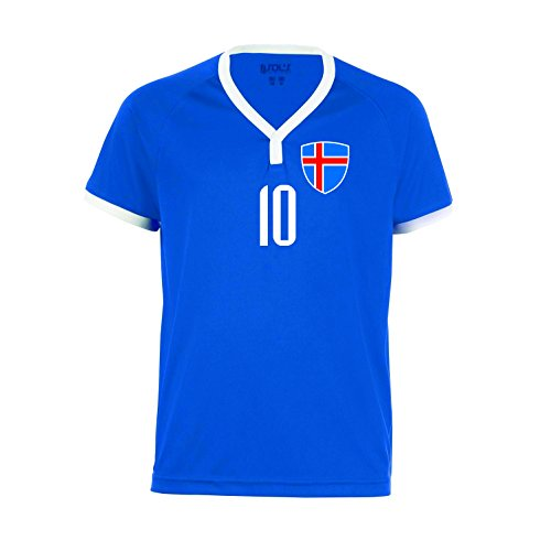 nationshirt Island Trikot BR 10 Royal - B-B-B- Hose + Stutzen WM 2018 World Cup Trikot (116)