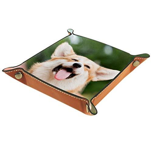 MUMIMI Plato cuadrado de cuero para mujeres y niñas, bandeja para joyas, diseño de perro Corgi, regalo de cumpleaños para el día de la madre