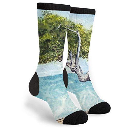 StockingsSki Socks Lonely Divi Tree Landscape Unisex High Socks Novelty Funny Dress Socks Trainer Socks High Boot Stockings 40CM