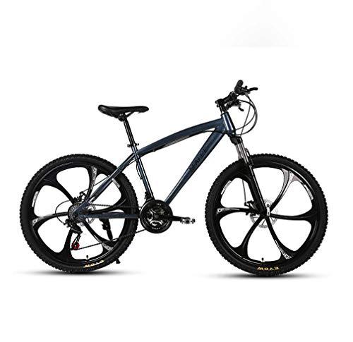 AISHFP Adultos de 24 Pulgadas de Bicicletas de montaña, Motos de Nieve Playa de Bicicletas, Bicicletas de Doble Freno de Disco, de aleación de Aluminio Ruedas,Gris,24 Speed