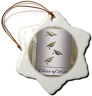 Ditooms Class of 2013 Caps with Tassels Silver and Gold Snowflake Decorative Hanging Ornament, Porcelain, 3-Inch