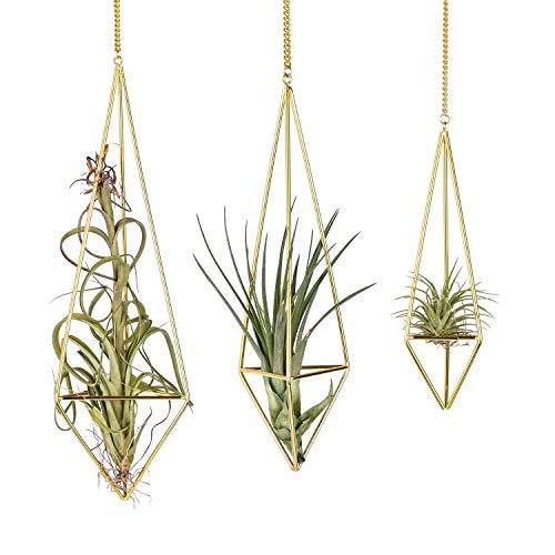 Knik Glass Soporte para plantas de aire colgante de metal Tillandsia, maceta de cactus suculentos, cestas colgantes con forma de pirámide geométrica, en color dorado, paquete de 3 (3 variadas)