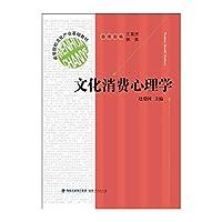 高等院校文化产业基础教材:文化消费心理学