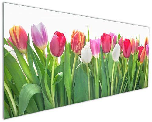Wallario Küchen-Rückwand | Glas mit Motiv Rote weiße und Pinke Tulpen im Frühling in Premium-Qualität: Brillante Farben, ohne Aufhängung | abwischbar | pflegeleicht