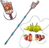 Recogedor de Frutas - Recolector de Frutas de Acero Inoxidable de...