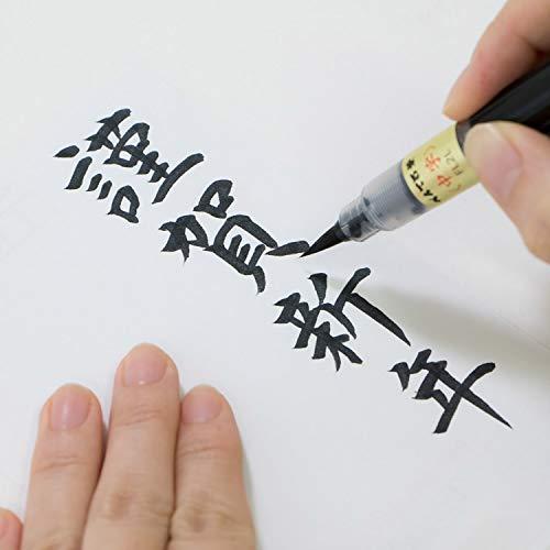 ぺんてる筆ペンぺんてる筆中字XFL2L黒
