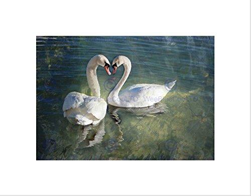 Wee Blue Coo Décoration murale représentant un couple de cygnes et un cœur
