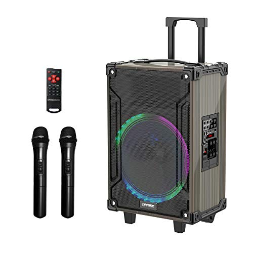 Karaoke Machine with wireless microphone - EARISE M39 Portable PA System - 12' Woofer with 2 Wireless Microphone for Home Karaoke 100W
