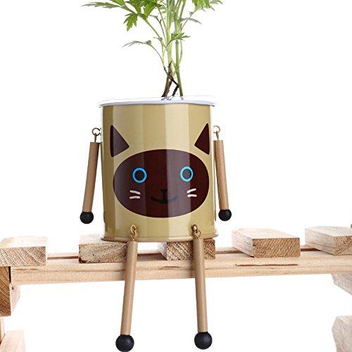 Plantes Home Office décoratif Mini Garden Blindé Pet Bonsai Métal Fleur Jardinière Pot avec Graines sol en bois
