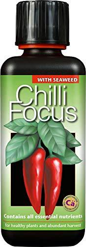 Chilli Focus 300