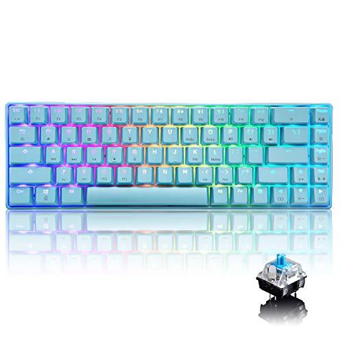 Tastiera da gioco meccanica al 60% tipo C cablata 68 tasti Tastiera impermeabile USB retroilluminata a LED Retroilluminazione illuminazione RGB Tasti anti-ghosting completi (interruttore blu/blu)