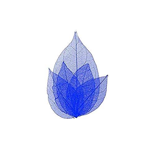 Feuilles squelette pour ongles - nail art - couleur Bleu