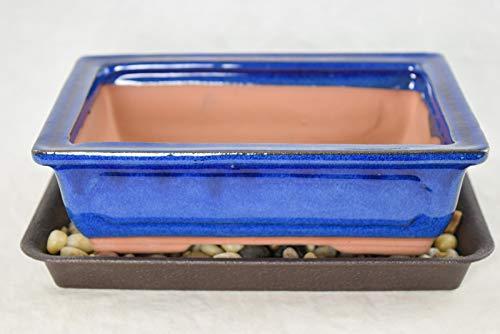 8' Rectangular Dark Blue Bonsai/Succulent Pot + Tray + Rock + Mesh Combo
