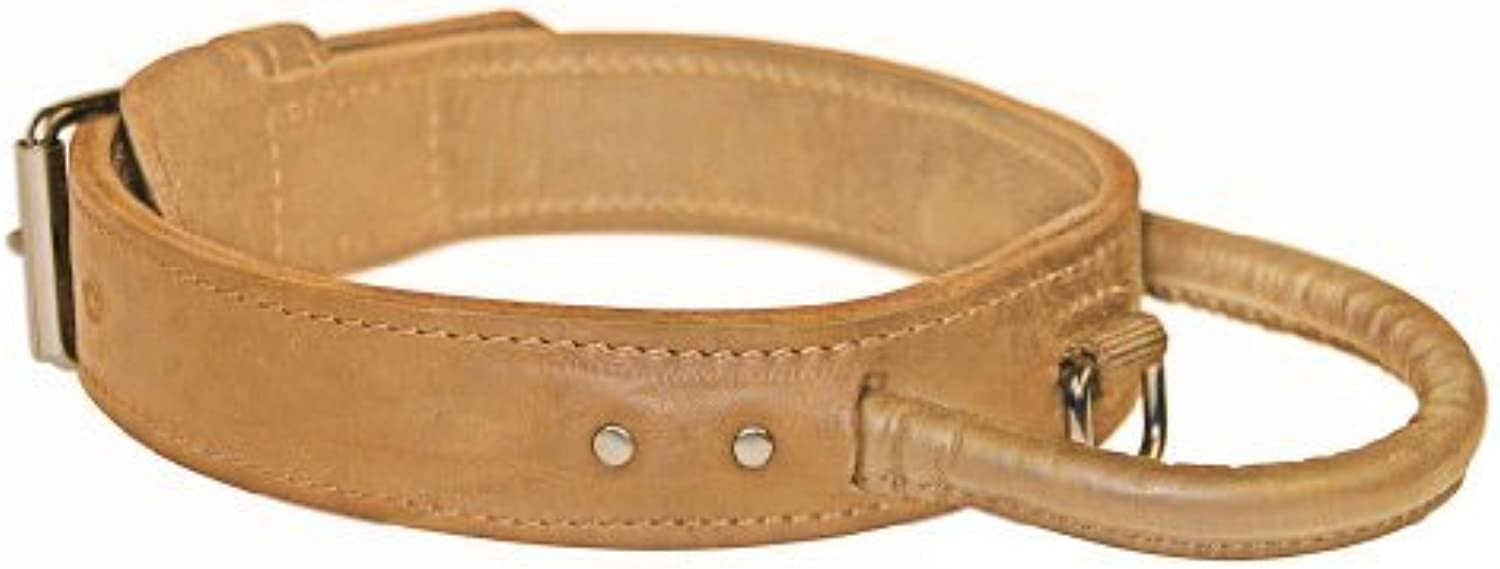 Dean and Tyler  SIMPLICITY+ , Dog Collar with Handle and Chrome Plated Steel Hardware  Tan  Size 86cm by 4cm  Fits Neck 81cm to 91cm