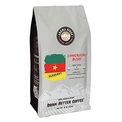 Cameroon Boyo Peaberry Freshly Roasted Coffee Beans 16oz