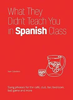 What They Didn't Teach You in Spanish Class: Slang Phrases for the Cafe, Club, Bar, Bedroom, Ball Game and More (What They Didn't Teach You in Class)