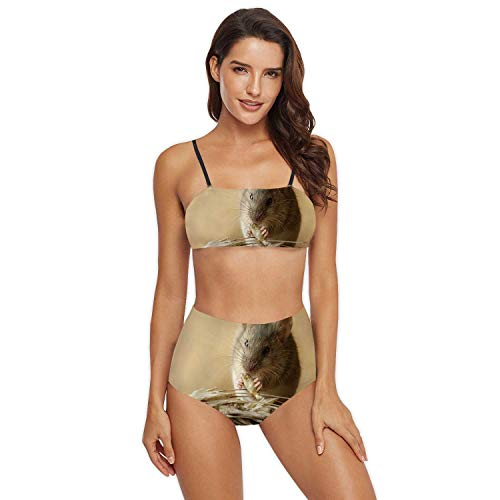 Closeup Small Vole Mouse eats Grain of rye Near Inflorescence on The Field.Concept Fight with Rodents.Rat,Two Piece Padded eau Bikini Set Wide Straps Bathing Suit Mouse Animal S