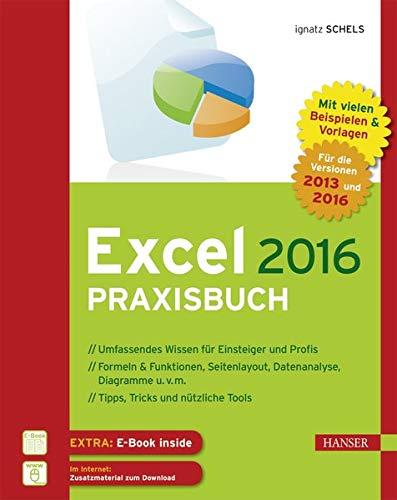 Excel 2016 Praxisbuch: Von der ersten Tabellenkalkulation bis hin zur Nutzung von ODBC und Power Pivot