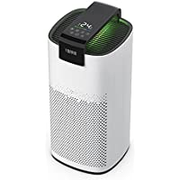 TOPPIN TPAP005 True HEPA Filter Air Purifier